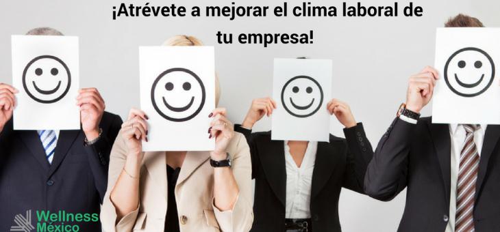 ¿Cómo puedes mejorar el clima laboral con un programa Wellness? Descúbrelo
